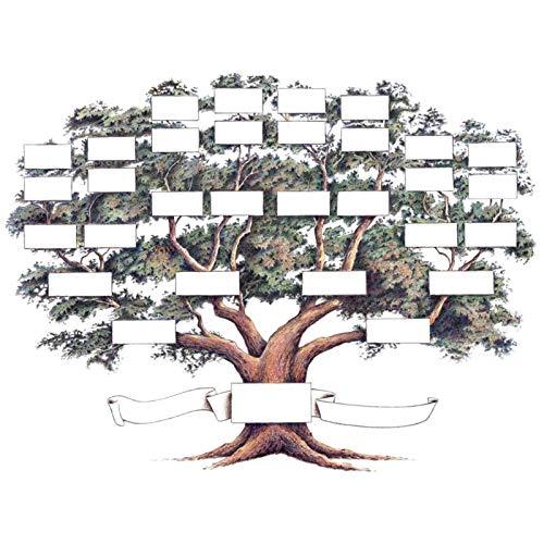 AIKY Cuadro de árbol genealógico, decoración de Granja amigable, sin Marco, Arte de Pared de Historia Familiar para la ascendencia y la genealogía