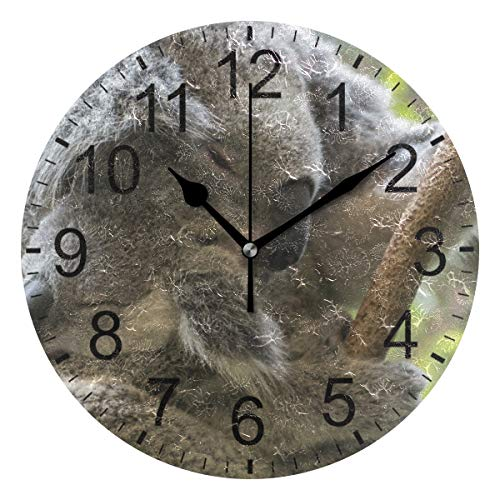 SENNSEE Koala Bear - Reloj de Pared con diseño de Osito de Peluche