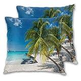 BROWCIN 2 Pack Funda de Almohada Coconut Palm en Caribbean Beach Cancún México Lino Suave Cuadrado Sofá Cama Decoración Hogar para Cojín 45cm x 45cm