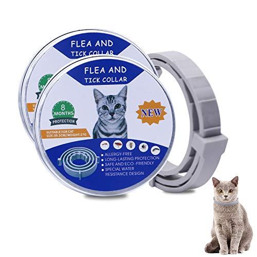 Banydoll Collare antipulci per Gatti Impermeabile con Oli Essenziali Naturali per 8 Mesi di Protezione, pulci e zecche Trattamento Efficace per Gattini(38cm)