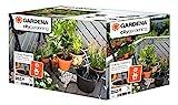 Gardena 1265-20 Set de riego en Vacaciones City Gardening, para un máximo de 36 Plantas, Negro, Gris