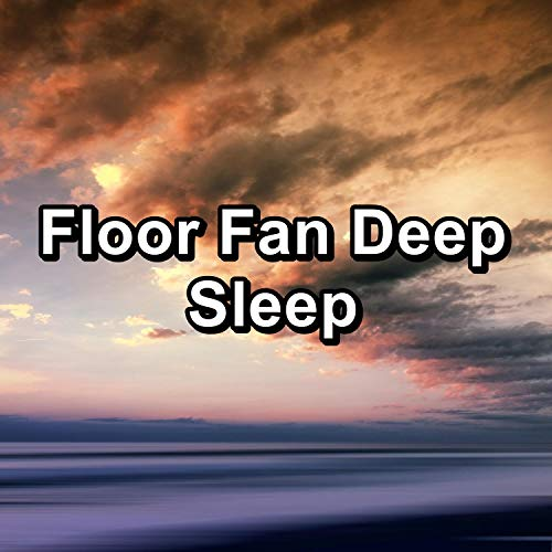 Floor Fan Deep Sleep