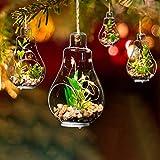 Weihnachten Lichterketten Weihnachtsbaum hängende Glühbirne Deko Set von 4