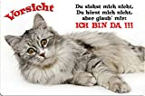 +++ SIBIRISCHE WALDKATZE Katze - METALL WARNSCHILD SCHILD KATZENSCHILD SIGN - SIB 02