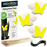 REKVEN - Small Sticky Traps, 30 Pack, for Fruit Fly, Fungus Gnat and Other Bugs