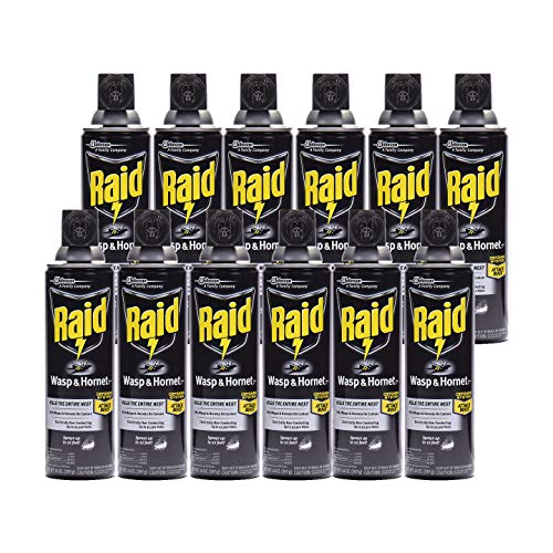 Raid Wasp Hornet Killer Spray (14 Ounce (Pack of 12)