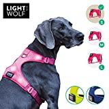 riijk LED Hundeweste für mehr Sicherheit, Warnweste in pink, Hundegeschirr Weste verstellbar, 5 helle Lichter, Leuchthalsband