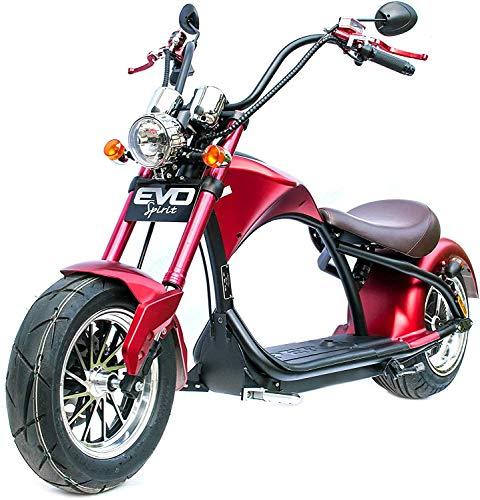 Ecorider Elektroroller Citycoco, Modell Harley