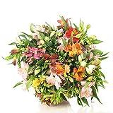 Ramo de Flores Alstroemerias Variadas, Flores Naturales a Domicilio Blossom® | Flores Frescas y...