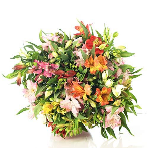 Ramo de Flores ALSTROEMERIAS Variadas | ENTREGA EN 24 HORAS GRATIS | Flores Frescas Naturales y Recién Cortadas a domicilio