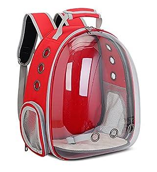 Sac à dos de transport pour animaux de compagnie - Transparent - Portable - Voitures et oiseaux - Sac de voyage - Avec perchoir