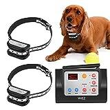 Best Wireless Dog Fence - WIEZ Dog Fence Wireless & Training Collar Outdoor Review