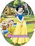 Uovo di Pasqua ARTIGIANALE cioccolato al latte principessa Biancaneve con SORPRESA puoi anche personalizzare l'uovo a tuo piacimento! (6kg)