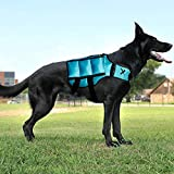 Xdog Weight & Fitness Vest for Dogs - A Weighted Dog Vest Used to Build Muscle, Improve Performance, Combat Obesity & Anxiety - Improve Your Dog's Overall Health & Exercise. (Small, Teal)