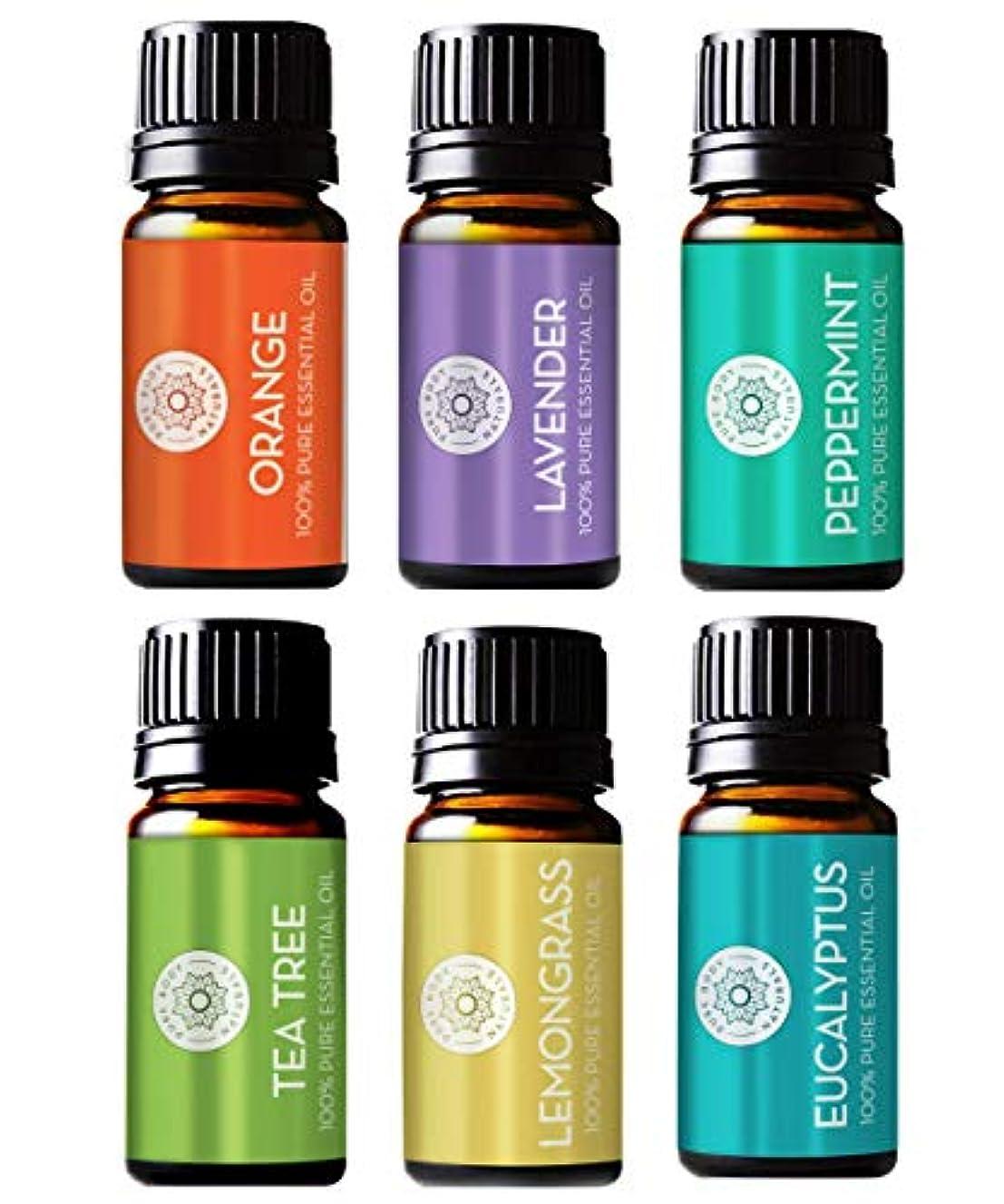 Pure Body Natural Essential Oils Set, 100% Pure Aromatherapy Diffuser Oils, Sample Kit for Beginners, Lavender, Tea Tree, Eucalyptus, Lemongrass, Orange, Peppermint - 10 Milliliter (6 Count)