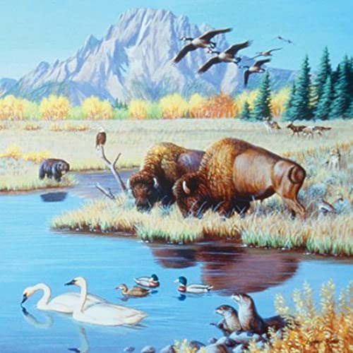 Cynthie Fisher Buffalo at the Pond 500pc Jigsaw Puzzle by SunsOut
