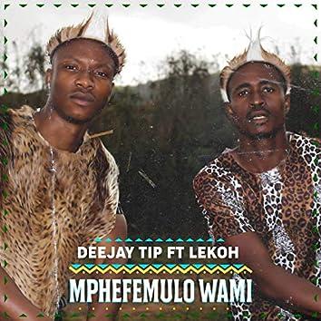 mphefemulo wami (Radio Edit)