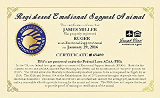 WORKINGSERVICEDOG.COM Official Emotional Support Animal ESA Certificate - Customized with You and Your Pets Information and Certificate Date. Free Duplicate Copy of Your ESA Certificate