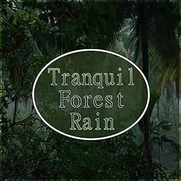 Tranquil Forest Rain - Deep Sleep, Spa, Massage, Meditation, Yoga, Healing and Well-Being