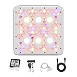 Beelux 1500W Grow Lights for Indoor Plants CREE COB LED Full Spectrum Veg and Flower 4x4ft Coverage with Dual Switch and Dual Chips Reflectors Monitor Adjustable Rope (Actual Power 300W)