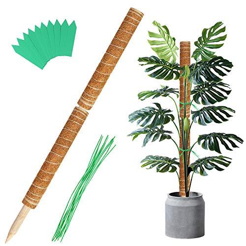 2 Stück 41CM Moosstab Pflanzstab Kokos Rankhilfe Pflanzstab Blumenstab Pflanze Totem für Garten Pflanzenunterstützung Kokosstab Verlängerung