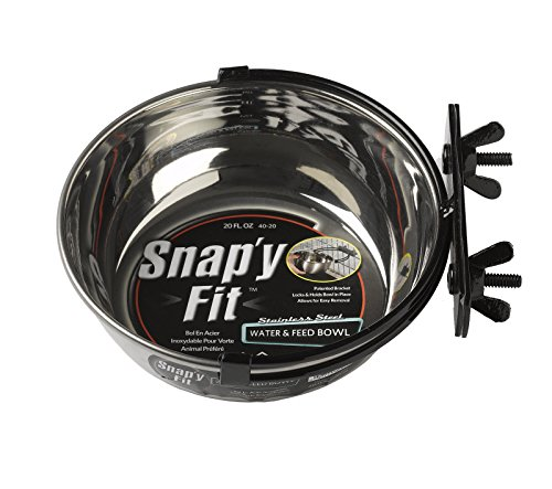 MidWest Homes for Pets Snap'y Fit Food Bowl / Pet Bowl, 20 oz. for Dogs, Cats & Small Animals