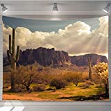 OTTOSUN Landscape Tapestry Wall Hanging,Arizona Desert Wild West Landscape,Tapestry Nature Landscape Art Wall Hanging,60x40 in