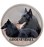 LUKKA Groenenendael - Perro de pastor Belga adhesivo 15 cm