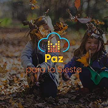 """"""" Paz Tierna para la Siesta """""""