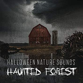 Halloween Nature Sounds: Haunted Forest - Fireplace with Thunder, Rain and Howling Wind, Halloween 2019 & Creepy Music