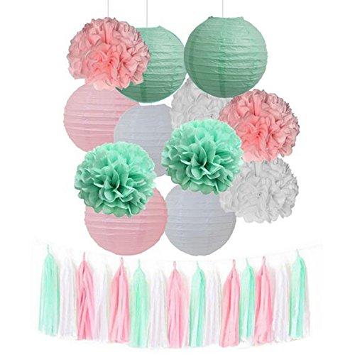 15pcs Mixed Mint Green Pink White Tissue Pom Poms Tassel Garland Paper Lanterns Wedding Bridal Shower Decor Girl Baby Shower Princess Birthday Party Decor
