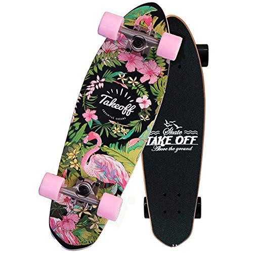 WRISCG Mini Cruiser monopatín Completo Twin Tip Skateboard 68 × 19cm, rodamientos ABEC-9, 7 Capas Monopatín de Madera de Arce, para Principiantes y Profesionales y Adultos y niños,D