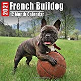 Calendar 2021 French Bulldog: Cute French Bulldogs Photos Monthly Mini Calendar With Inspirational Quotes each Month