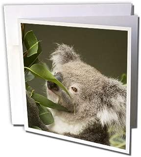 personalised wedding cards australia