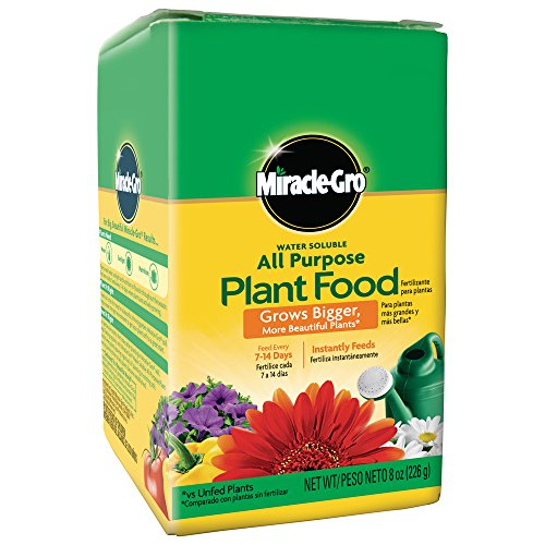 Miracle-Gro 2000992 Water Soluble All Purpose Plant Food (12 Pack)