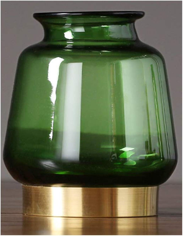 HBJP Décoration De Vase en Verre Transparent Vase De Plante Hydroponique à La Maison Vert Vase (Couleur   8×29×14cm)