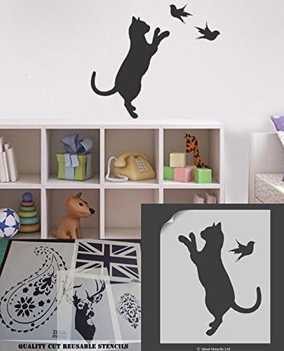 Gato de la plantilla del pájaro, decoración casera, arte del arte de la plantilla, cuadro de la plantilla, plantillas Ideal, plástico, M/ 14 inches cat: Amazon.es: Hogar