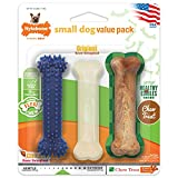 Nylabone Small Dog Value Pack (with edible), XS