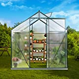 JULY'S SONG Greenhouse,Polycarbonate Walk-in Plant Greenhouse with Window for Winter,Garden Green House Kit for Backyard/Outdoor Use(6'x6')