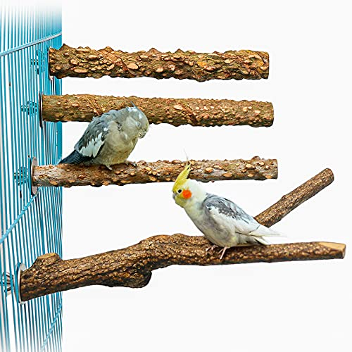 4PCS Wood Bird Perch Stand for Cage, Wooden Prickly Parrot Perch Paw Grinding Climbing Standing Stick Exercise Toy Bird Stand Cage Accessories for Budgies, Parakeet, Cockatiel, Conure,Lovebirds (H01)