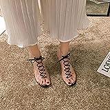 DZQQ Zapatos de Mujer Sandalias Nuevo Verano Fino con Correas Cruzadas de plástico Transparente Personalidad Hada Tacones Altos Zapatos Romanos