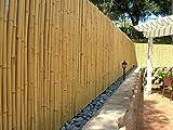 DE-COmmerce Hochwertiger Garten Zaun Sichtschutz Bambus ATY Nature I Garten, Terrasse, Balkon Sichtschutz Bambus mit geschlossenen Rohren I Windschutz Bambus 200 cm x 250 cm
