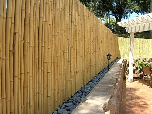 DE-COmmerce Hochwertiger Garten Zaun Sichtschutz Bambus ATY Nature I Garten, Terrasse, Balkon Sichtschutz Bambus mit geschlossenen Rohren I Windschutz Bambus 150 cm x 250 cm