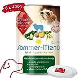 Bio Nassfutter für Hunde, hochwertiges Hundefutter, Alleinfutter, glutenfrei, getreidefrei, lactosefrei, zertifiziert Deutschland hergestellt,...