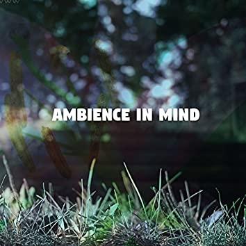 Ambience In Mind