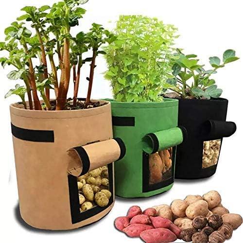 Mingbo 3 depot Translated Pcs Garden Planting Boxes Harvest Easy Pot Planter to
