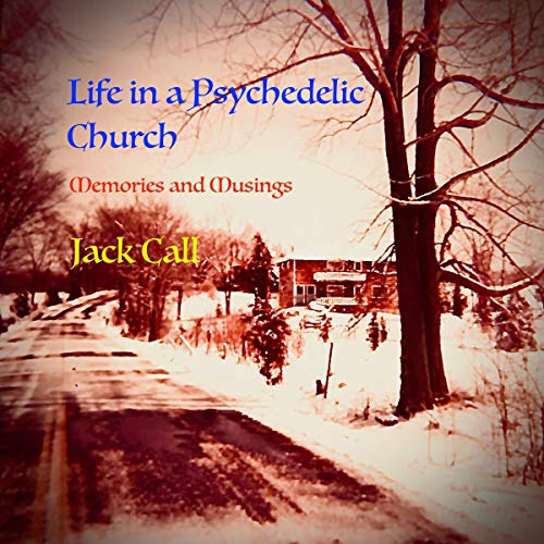 Life in a Psychedelic Church audiobook cover art