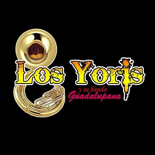 Los Yoris y Su Banda Guadalupana