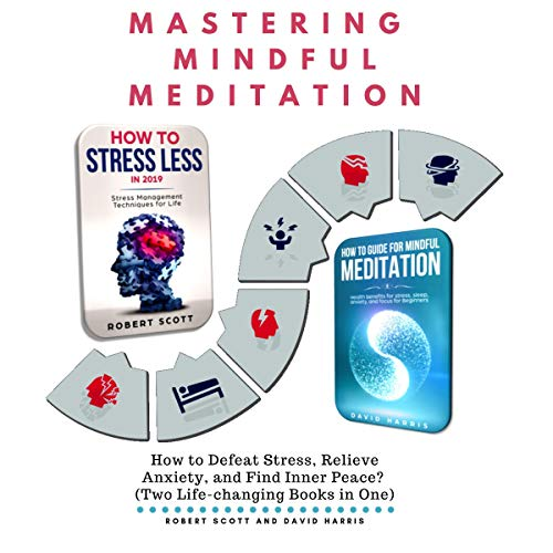 Mastering Mindful Meditation: How to Defeat Stress, Relieve Anxiety, and Find Inner Peace? audiobook cover art