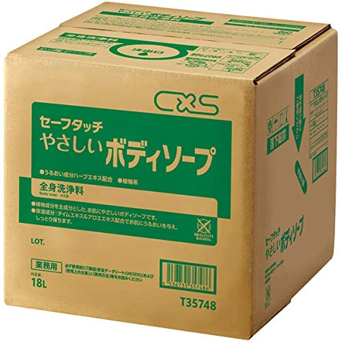 ヒステリック適性ヶ月目シーバイエス 全身洗浄料セーフタッチやさしいボディソープ 18L (T35748) 1個